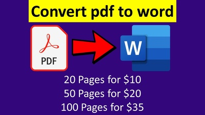 Convert PDF to word or scanned pages to word or google docs