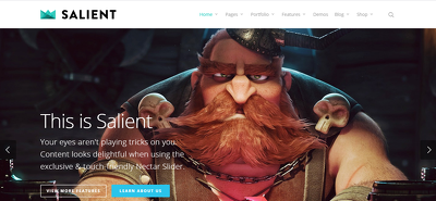 Install Your Wordpress Theme and Customize your Website