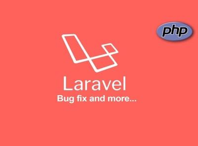 Do bug fixing or customization in Laravel, PHP