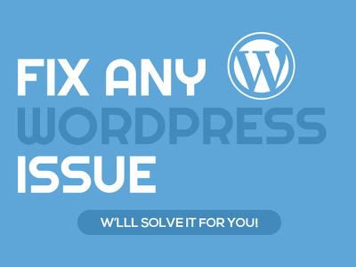 Bug/Tweak fixing on your WordPress site