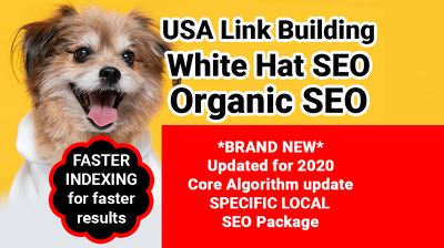 USA Link Building, SEO GOOGLE Strategy, white hat & Organic SEO