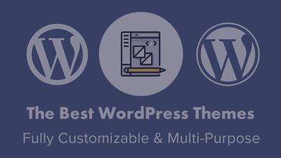 Develop a Custom Wordpress Website or Plugin