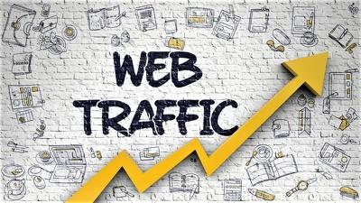 Send Adsense Safe Organic Website Traffic