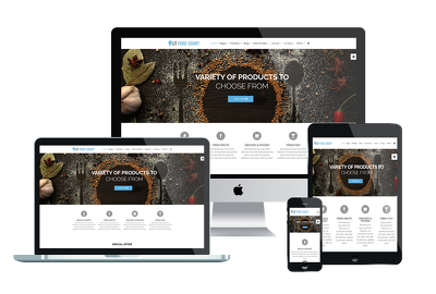 Build WordPress website with Responsive design and SEO Friendly