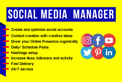 Be your social media manager and  content creator & PA