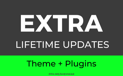 ✅ Install EXTRA theme and plugins in WordPress