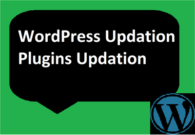 Update wordpress and plugin with available new version