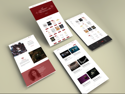 Design Professional 5 Pages Responsive Wordpress website