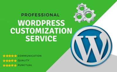 Do WordPress Theme Customization