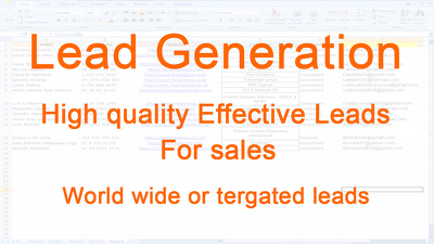 Provide high quality effective 50 leads for your sales
