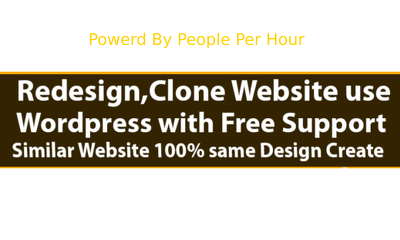 Redesign copy clone website and design wordpress website