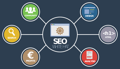 Customized SEO Package For All Shopify Stores