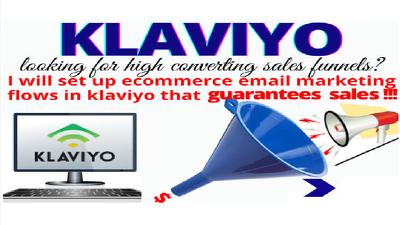 Setup ecommerce klaviyo shopify sales email marketing & Fb add