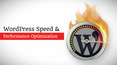 Optimize your website speed + score high on google page insights
