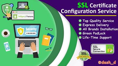 Install HTTPS SSL certificate or fix related errors