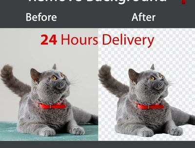 Removing background images with high accuracy and quality