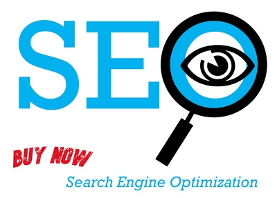 Provide Monthly SEO service to rank your website on Google