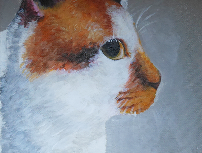 Illustrate your pets - Watercolour, Poster, Acrylic, Pencil