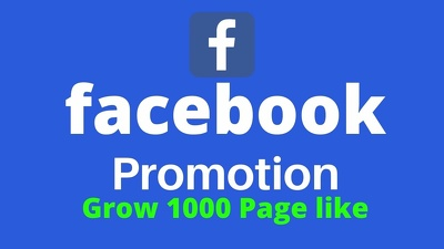 Promote your facebook page and grow 1000 page likes
