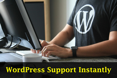 Provide one hour of wordpress premium support instantly