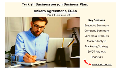 Turkish Businessperson Business Plan, Ankara Agreement, ECAA