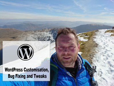 Provide 1 hour of Wordpress development, updates or bug fixing