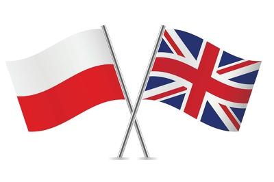 Provide 500-1000 words  Polish English Translation