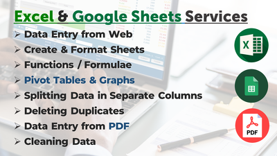 Do Data Entry and Formatting in Excel or Google Sheets upto 1 Hr