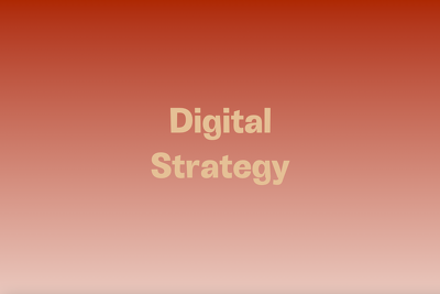 Develop a digital marketing strategy for your business