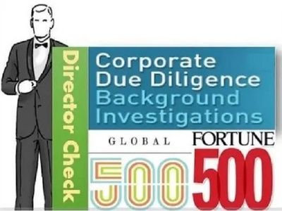 Conduct due diligence director and company research
