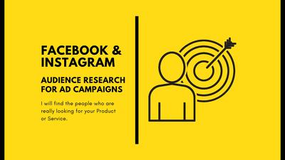 Laser Targeted Audience Research - Facebook & Instagram