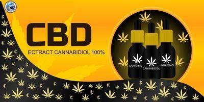 Design CBD Hemp Cannabis eCommerce Store Website