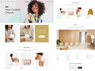 Develop proffessional ecommerce website for your business