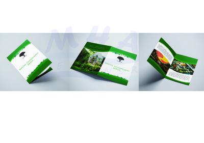 Design attractive brochure leaflet or flyer