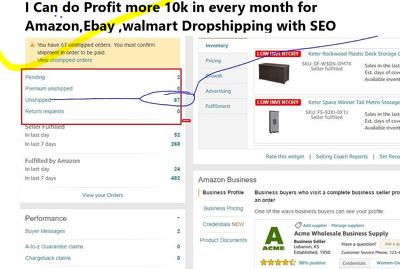Do data entry,Amazon,Ebay and Dropshipping and can do profit 10k