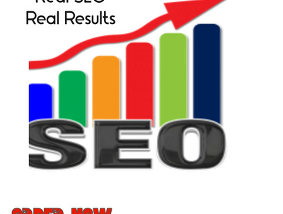Do Monthly SEO to Rank Website On Top of Google 1st page.