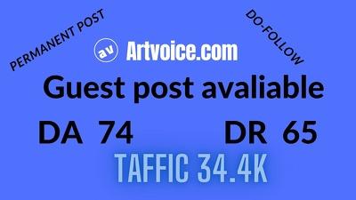 Provide Do Follow guest post on artvoice.com