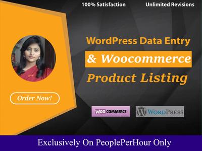 Do WordPress data entry for an Hour