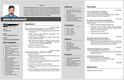 Write professional CV / Resume
