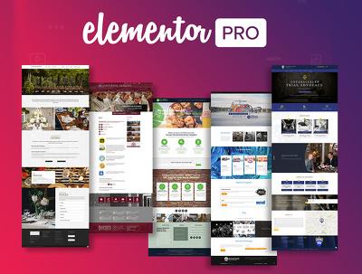 Develop WordPress Website by elementor or elementor pro