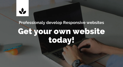 I will do responsive WordPress website design, Optimize, And SEO