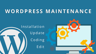 Provide 1 hour of maintenance for your WordPress website