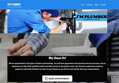 Develop a Responsive Business Portfolio Website