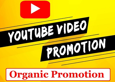 I will promote youtube channel to audience to get views,