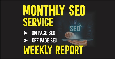 Provide complete monthly seo service for top google ranking