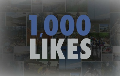 Promote your Facebook page to our Community and grow 1000 Likes