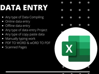 I will Create any type of task in Ms Excel for you