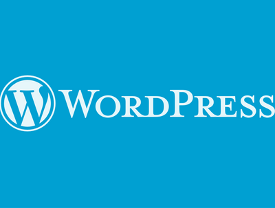 Fix any WordPress issue