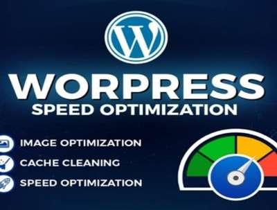 Do WordPress website speed optimization, Increase PageSpeed
