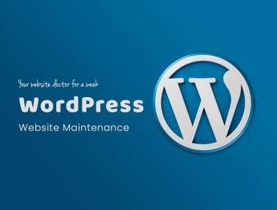 Do WordPress Website Maintenance for One Week